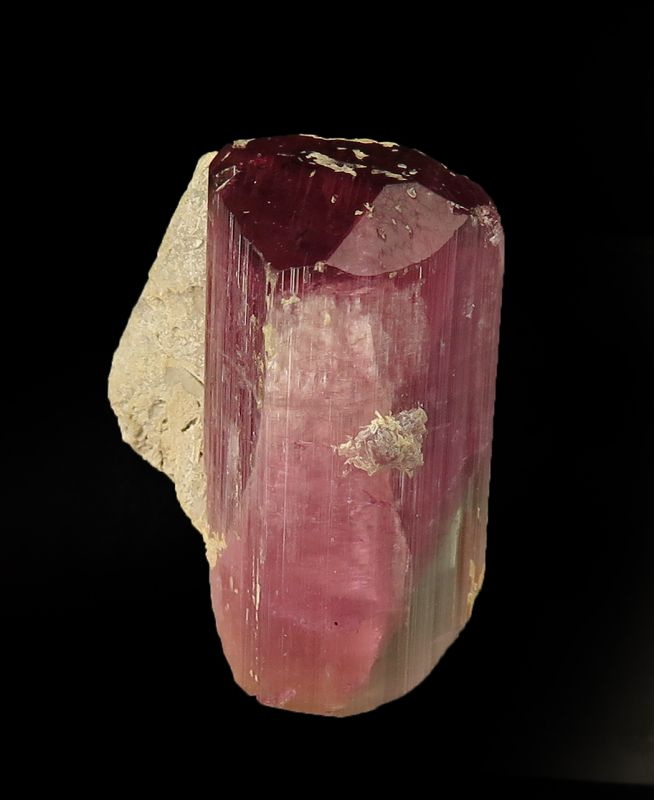 Unusual bi-colored DT Tourmaline (David Burgess Coll.)