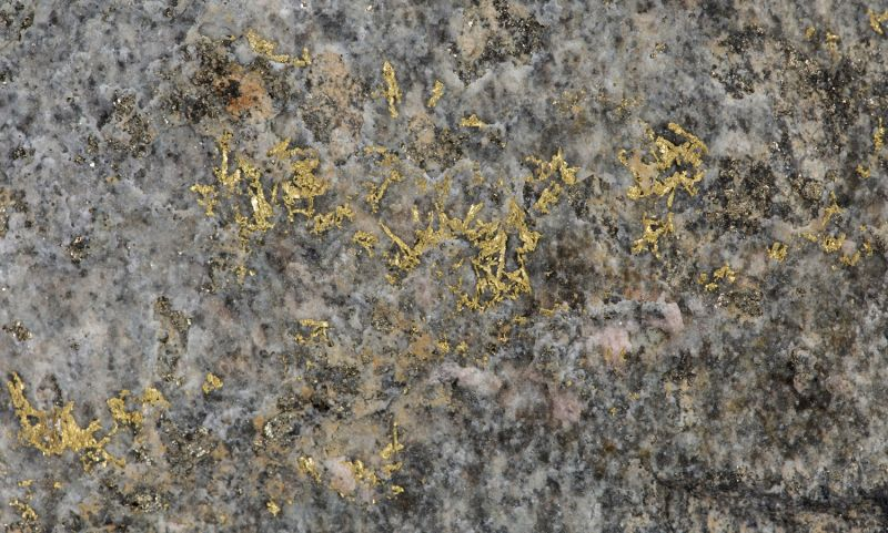 Gold on Quartz (2017-18 finds) - large mass of ore