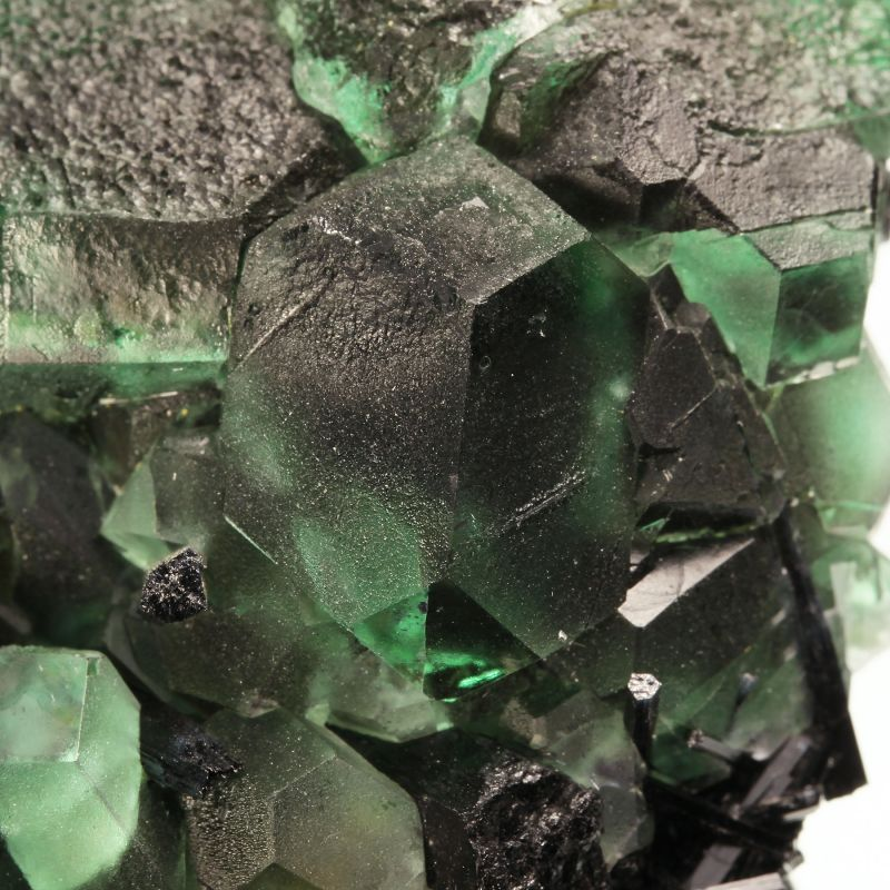 Fluorite (attractive bi-colored crystals) with Schorl (ex Shields Flynn Collection)