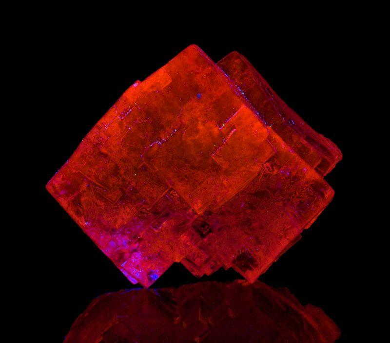 Large gem Halite xls (fluorescent)