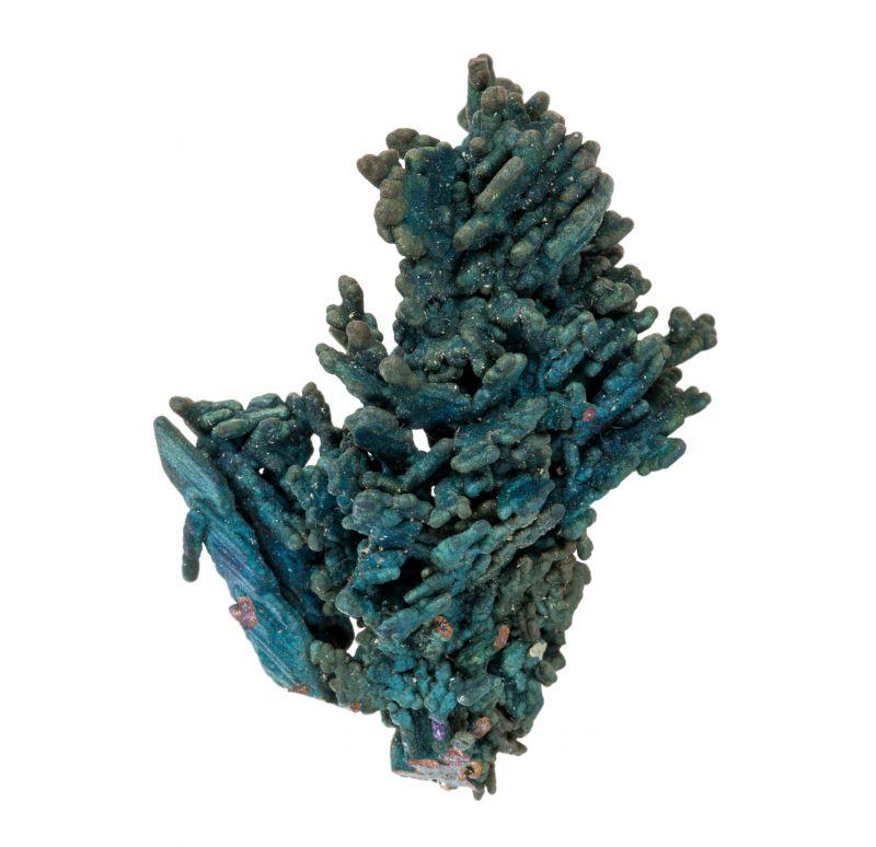Chalcocite, Djurleite & Chalcopyrite (rare combo)
